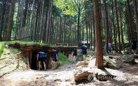 장흥에 전국 최초 누드 삼림욕장 30일 개장