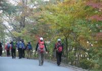 한국인, 일생 중 8년을 질병에 시달린다