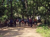 [건강백세]가을 산행, 척추∙관절 건강지키는 등산법은?
